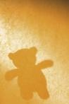 missing-child-teddybear