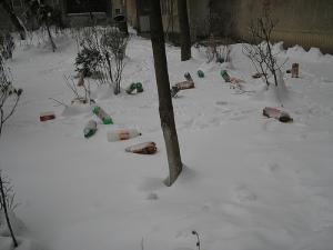 Litter on ice.