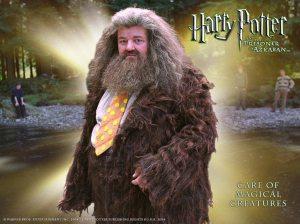 Hagrid, nice suit, dude.