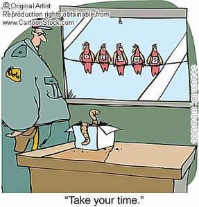 WormCartoon